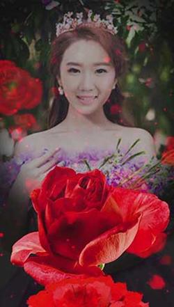 你是我的玫瑰花